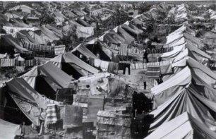 Les premiers réfugiés en 1948